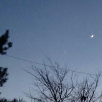 月と金星が