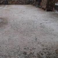 今日も雪からスタート