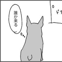 チャイムと犬