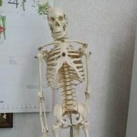 外傷治療専門整骨院として、必ず実行していること。これが実行できなければ、患者様と社会に大迷惑をかけています。