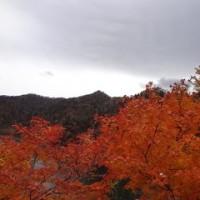 冬の寒さの北海道へ<3>
