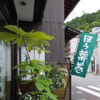 新緑の木曽町