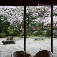 桜🌸とお肉と湯の花温泉♨