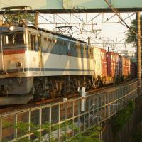 2017年4月28日 東海道貨物線 東戸塚 EF65-2075 5086レ