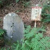 志賀越道の推定 彷徨編4