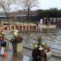 【京都府立植物園】第6回寄せ植えハンギングバスケットコンテスト展が始まっていますよ