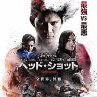 「ヘッド・ショット」、インドネシアの格闘王イコ・ウワイの大活躍映画