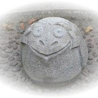 奇妙な石です