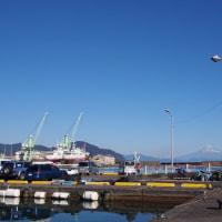 正月の小川港、フライ旗と富士山
