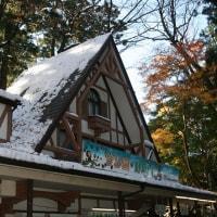 高尾山・紅葉と雪