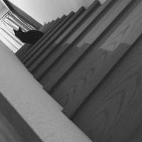 トーナルで階段トノ