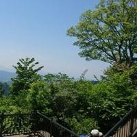 ジャストナウ、高尾山山頂