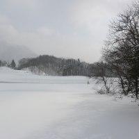 今日の天気 雪 でも日が差して来ました。