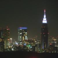 渋谷区桜丘町30階から見る夜景