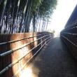 水戸の垣根