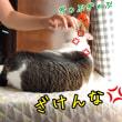 1・2 エクササイズ☆