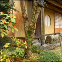 日本庭園~日向景修園