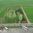 行田市の田んぼアート ギネス世界記録