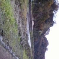 秋川渓谷にも秋