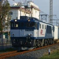 2017年2月27日  新金貨物線   EF64-1013 1094レ
