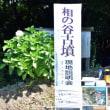 今治市にある愛媛県最大規模の前方後円墳 相の谷古墳 の現地説明会