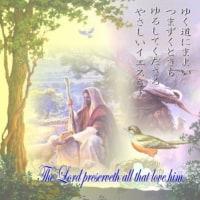 3月22日(水)の聖言