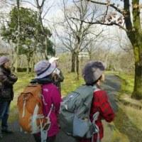 一年ぶりの野鳥観察会