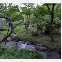 三溪園 ・ 環境講演会
