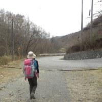 4度目の正直! 久々の富士山 ~秀麗富嶽12景・牛奥雁ヶ腹摺山 2017.5.3(水)~