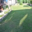 昨日芝生を刈り今日は水かけをする