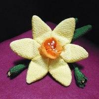 水仙の花 ( 水仙袋 )