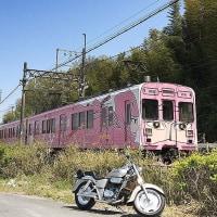 「忍者列車」と「こいのぼり」
