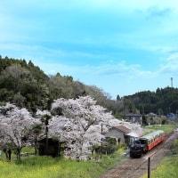 小湊鐵道2017.4 #13 ~ 花の駅 ~