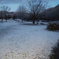 雪景色、 県立三木山森林公園