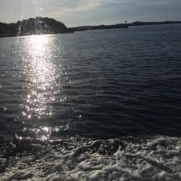 三重県釣り船漁市丸リベンジ今出船‼️