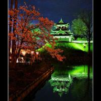 高田城の桜