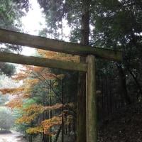 牡蠣小屋と桜井神社