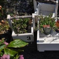 2017 花と緑のフェスティバル 簡単木工体験教室 開催