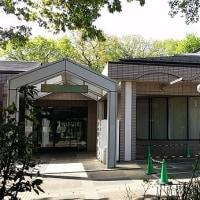 新緑の森の図書館