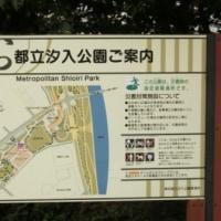 汐入公園へ 行ってきました