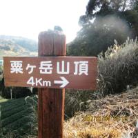 粟ヶ岳山登り強化練習!