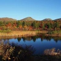 八甲田の紅葉絨毯、絶景でした!