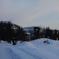 冬の川下公園