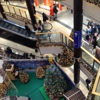 クラクフ4日目 中央広場のクリスマスマルクト🎄&ギャラリークラコウスカショッピングセンター4階のカルフール視察