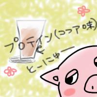 プロテイン入り豆乳