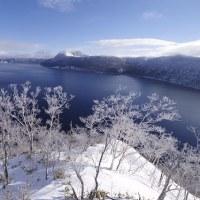 摩周湖の霧氷 ice on tree at Lake Mashu