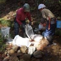 農業用水路清掃