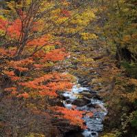 秋の撮影旅行 その4