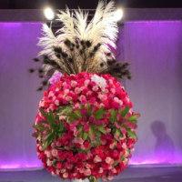 セントポーリア & 未来の花咲くパーティー
