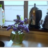 2678)今回のお花・・・